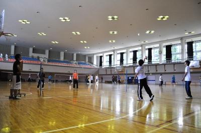 badminton-s1